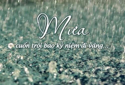 Những câu nói hay nhất ý nghĩa nhất về mưa khiến người nghe trĩu lòng